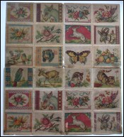 ABC Sampler Design Cross Stitch Pattern Model 1880