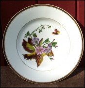 Bindweed Butterfly French Porcelain Plate 1950